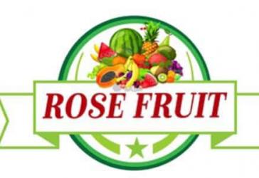 ROSE Fruıt Gıda Logistics Ltd Şti